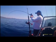 Τσαούσι στο Slow jigging SIM FISHING TEAM